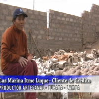 Luz Marina Idme Luque, Productor artesanal, Pucara - Lampa